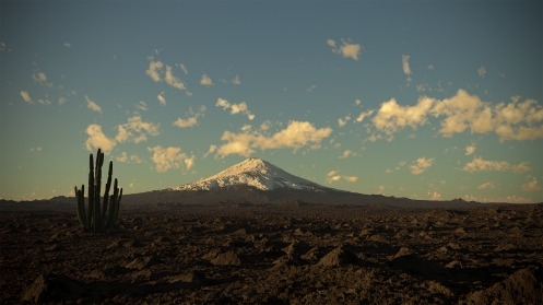 Chilenean desert